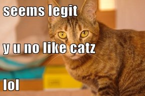 seems legit y u no like catz lol