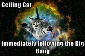Ceiling Cat  immediately following the Big Bang