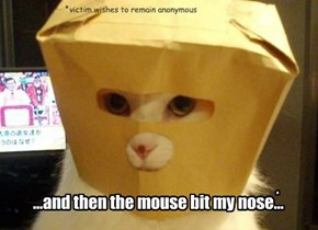 ...and then the mouse bit my nose...