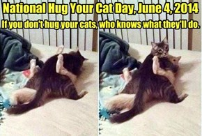 National Hug Your Cat Day, June 4, 2014