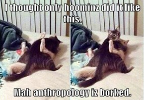 I thought only hoominz did it like this.  Mah anthropology iz borked.