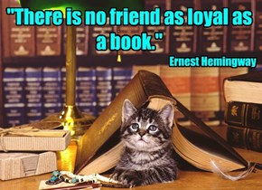 """There is no friend as loyal as a book."""