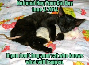 National Hug Your Cat Day  June 4, 2014       If you don't hug your cat who knows what will happen.