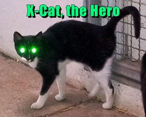 X-Cat, the Hero