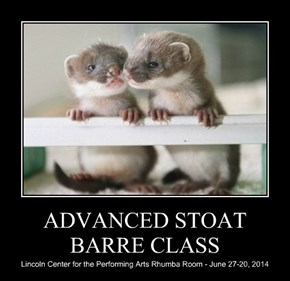 ADVANCED STOAT BARRE CLASS
