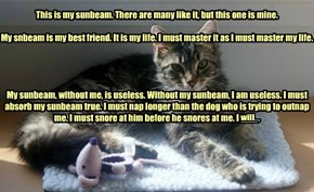Nappycat's Creed, excerpted