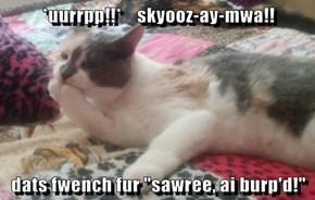 "*uurrpp!!*    skyooz-ay-mwa!!  dats fwench fur ""sawree, ai burp'd!"""