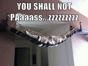 YOU SHALL NOT PAaaass...zzzzzzzzz