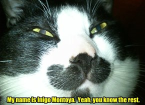 My name is Inigo Montoya.  Yeah, you know the rest.