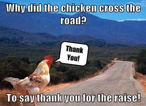 Why did the chicken cross the road?  To say thank you for the raise!