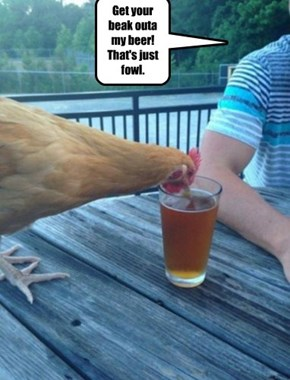Get your beak outa my beer! That's just fowl.