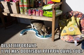 DIS IZ IMPORTANT.                                                 Y WE HAS DOOMSDAI PREPPIN DAWG FUD?
