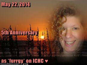 May 22, 2014 5th Anniversary as *furrgy* on ICHC ♥