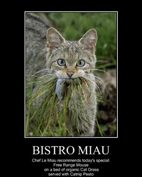 BISTRO MIAU
