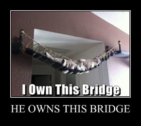 HE OWNS THIS BRIDGE