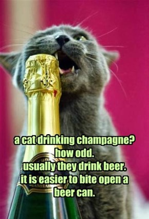 a cat drinking champagne? how odd. usually they drink beer. it is easier to bite open a beer can.