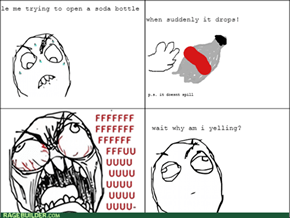 Because This is a Rage Comic, You Idiot!