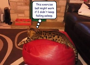 Should Exercising be This Comfortable?