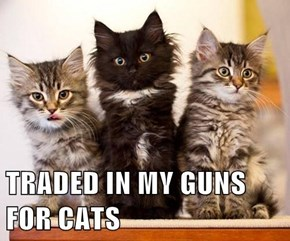 TRADED IN MY GUNS FOR CATS