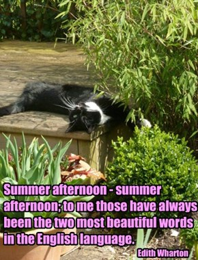 Summer afternoon - summer afternoon; to me those have always been the two most beautiful words in the English language.