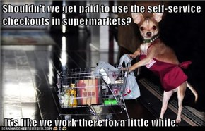 Shouldn't we get paid to use the self-service checkouts in supermarkets?   It's like we work there for a little while.