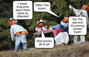 OMG! The moon!