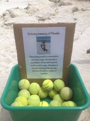 A Memorial Fit for a Dog
