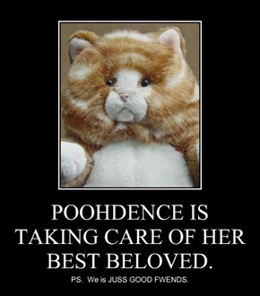 POOHDENCE IS TAKING CARE OF HER BEST BELOVED.