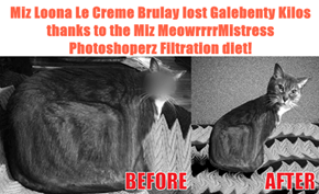 Miz Loona Le Creme Brulay lost Galebenty Kilos thanks to the Miz MeowrrrrMistress Photoshoperz Filtration diet!