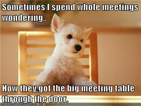 Sometimes I spend whole meetings wondering..  How they got the big meeting table through the door.