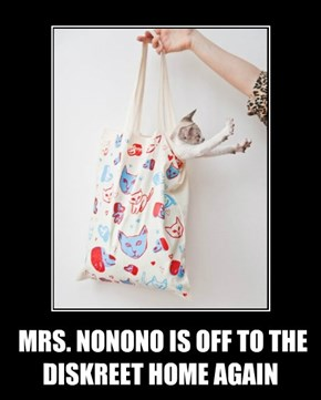 MRS. NONONO IS OFF TO THE DISKREET HOME AGAIN