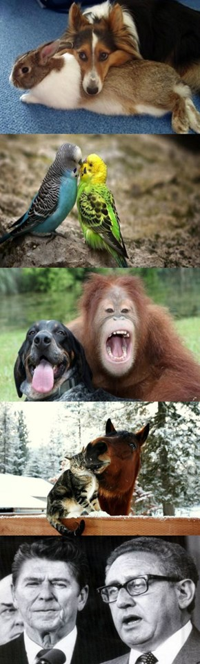 Inter-Species Love