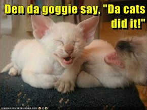 "Den da goggie say, ""Da cats did it!"""