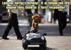 Happy Birthday furrgetmenot!