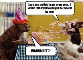 The main reason my kitteh looks forward to his birthday party every year.