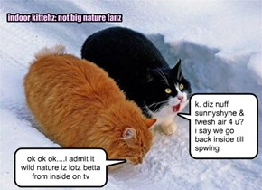 indoor kittehz: not big nature fanz