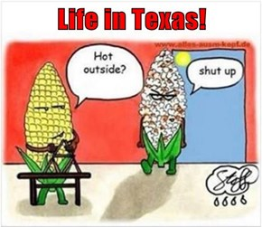 Life in Texas!