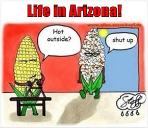 Life in Arizona!