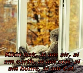 Kikin bak, ai am air, ai am earth, ai am sun, ai am home, ai am Cat.