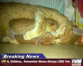 Breaking News - K, Children.. Remember Mama Always LUBS Yoo