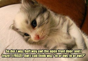 Kitteh hazza worry.