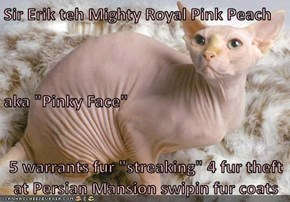 "Sir Erik teh Mighty Royal Pink Peach aka ""Pinky Face"" 5 warrants fur ""streaking"" 4 fur theft at Persian Mansion swipin fur coats"