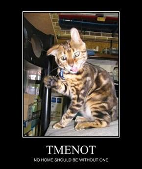 TMENOT