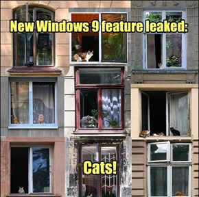 Windows Runs Better With Cats