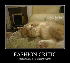 FASHION CRITIC