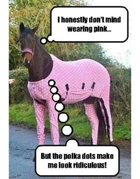 A fashion conscious horse.