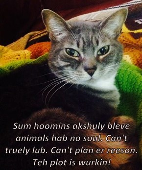 Sum hoomins akshuly bleve animals hab no soul. Can't truely lub. Can't plan er reeson. Teh plot is wurkin!
