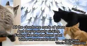 All the clouds are made of glass       And they're slowly sinking.      Falling like the shattered past      Were we meant to last ?