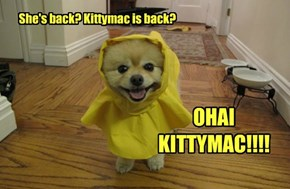 She's back? Kittymac is back?