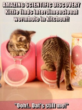 "AMAZING SCIENTIFIC DISCOVERY Kittie finds interdimensional wormhole in kitchen!!  ""Ooh!.. Dat's still me!"""